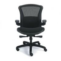 chair-adv1-b.jpg