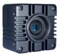 usb-hard-triggered-cased-cameras.jpg